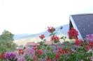 Цветущая Австрия